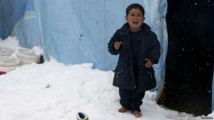 kar mülteci
